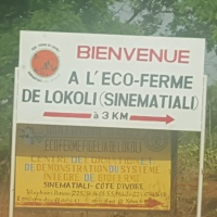 A la découverte de l'eco-ferme Lokoli